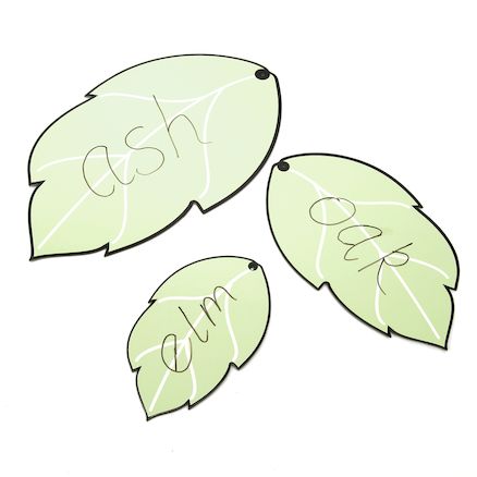 Leaf Shaped Whiteboards set of 3  large