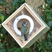 Urban See Through Bird Feeder House Box  medium