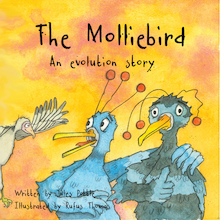 The Molliebird - An Evolution Story  medium