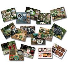 Mud Kitchen Activity Cards 16pk  medium