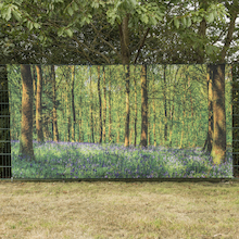 TTS Outdoor Immersive Environments Backdrop Forest  medium